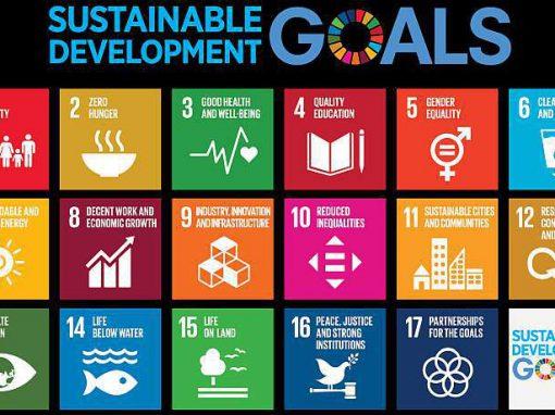 Bildung für nachhaltige Entwicklung an Schulen